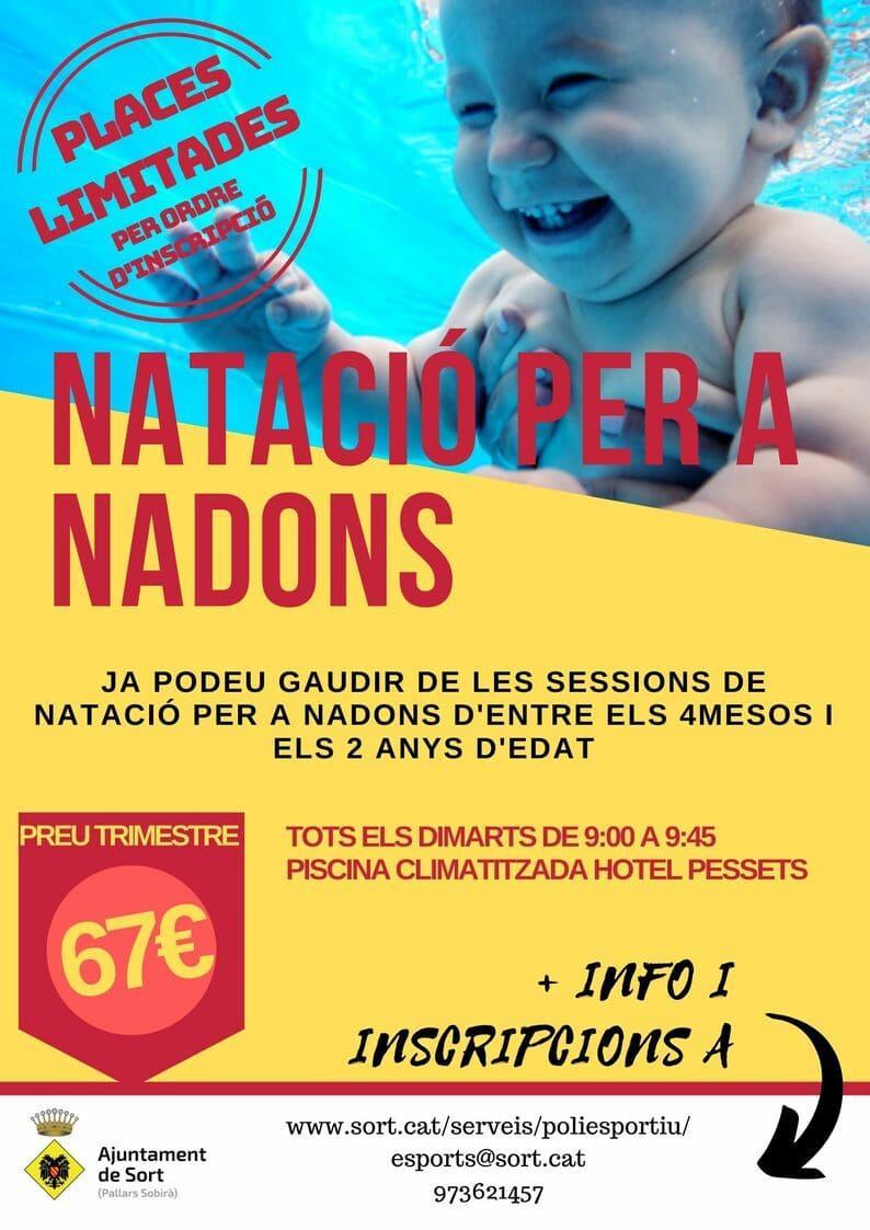Cartell natació per nadons