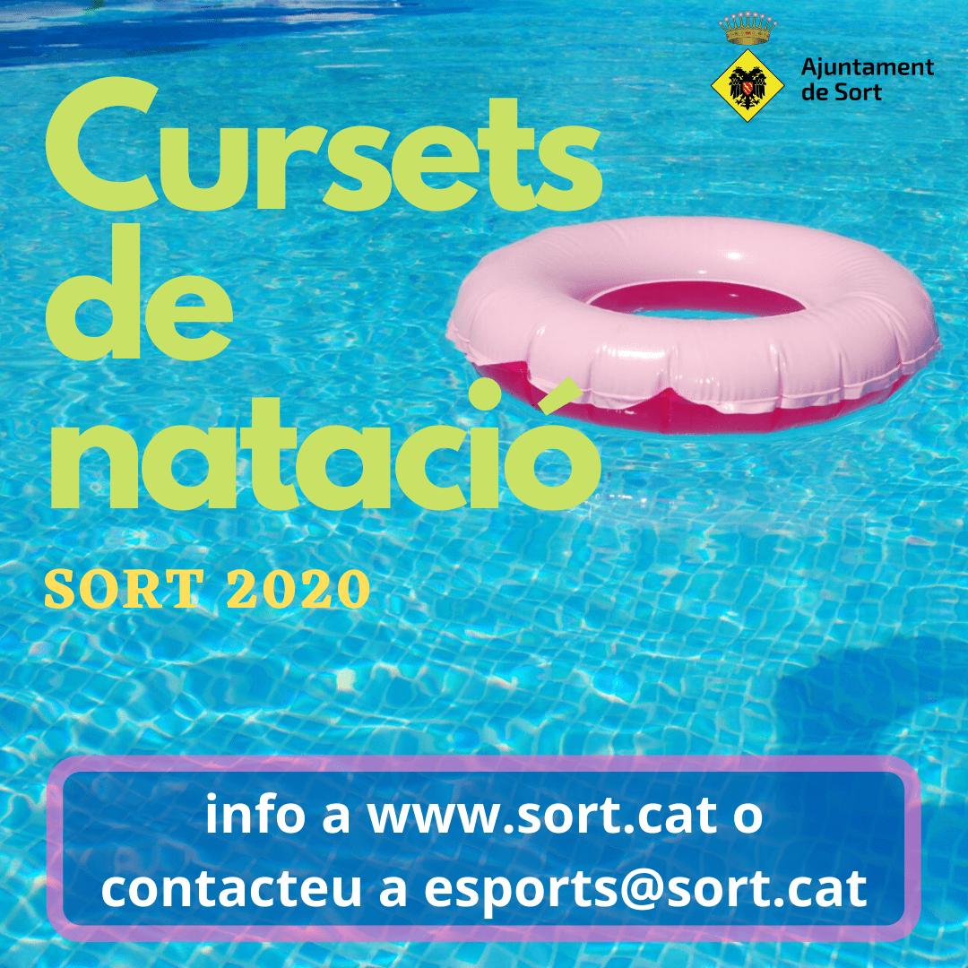 poster curset natació