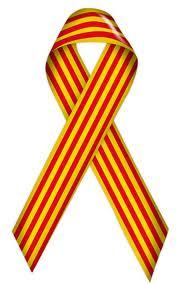 llengua catalana mailchimp